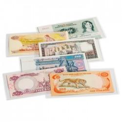 Pochettes de protection  BASIC 166 pour billets de banque