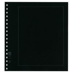 Feuilles neutres au format LINDNER 272mm x 296mm avec perforation 18 trous