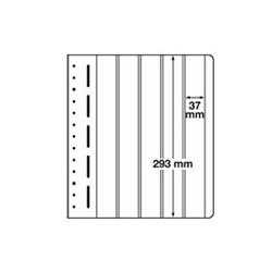 Feuilles LB en papier cartonné 5 bandes verticales