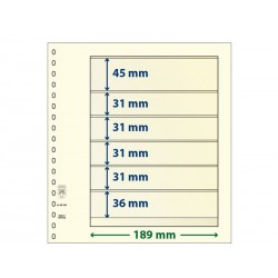 Feuilles neutres T à 6 bandes