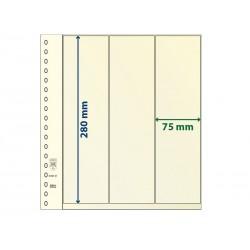Feuilles neutres T à 3 bandes verticales